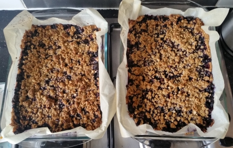 blueberry crumble bars.jpg